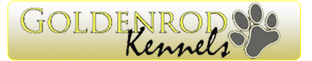 Goldenrod Kennels